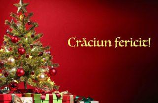 Clubul Sportiv Năvodari vă urează un Crăciun Fericit !