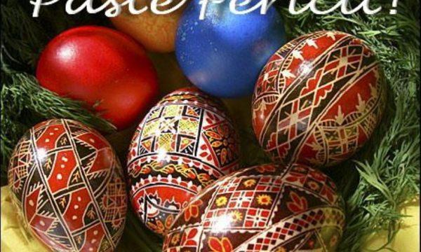 Clubul Sportiv Năvodari vă urează un Paște fericit !